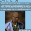 yasuke the african samurai