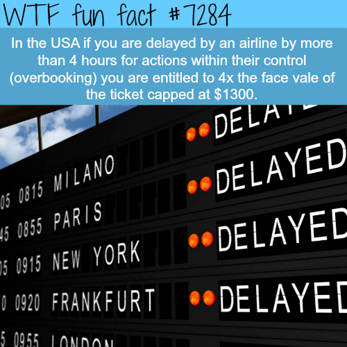 You can get your money back if an airline delayed your flight - WTF fun fact