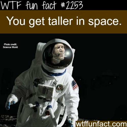 You get taller in space - WTF fun facts