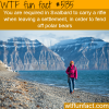 you have to carry a rifle in svalbard wtf fun
