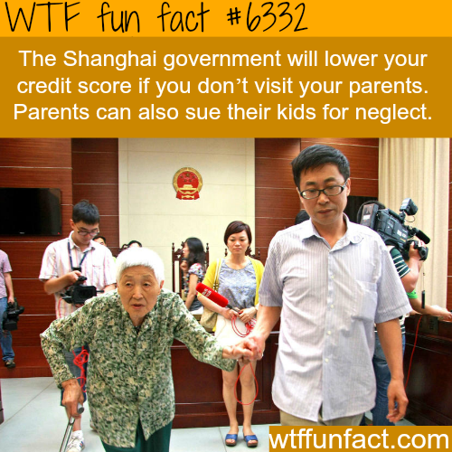 You must visit your parents in China - WTF fun facts
