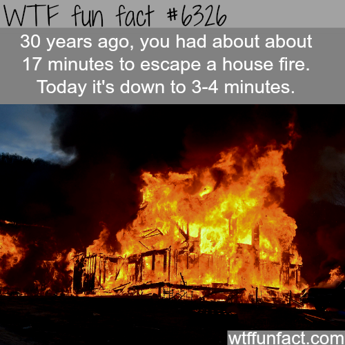 You only have about 4 minutes to - WTF fun facts