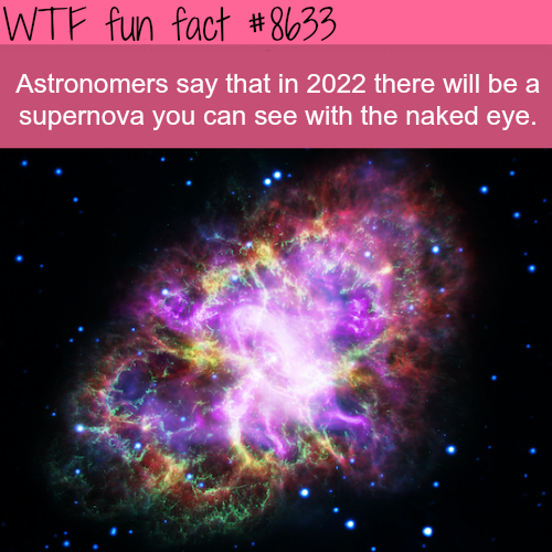 You will be able to see supernova with your naked eye in 2022 - WTF fun facts