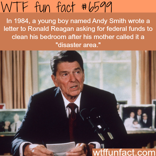 Young boy asked Ronald Reagan for federal funds - WTF fun facts