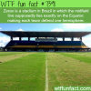 zerao stadium wtf fun facts