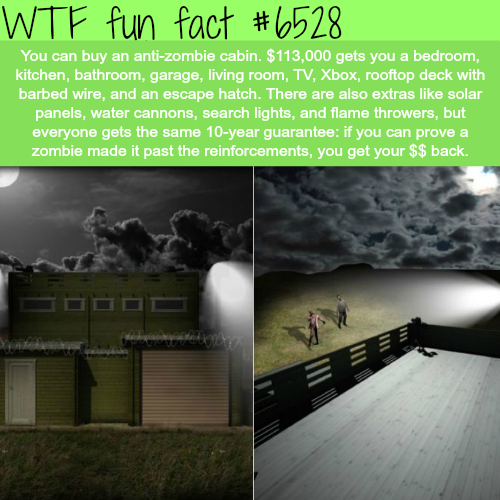 Zombie-proof log cabin - WTF fun facts