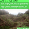 zone rouges wtf fun facts