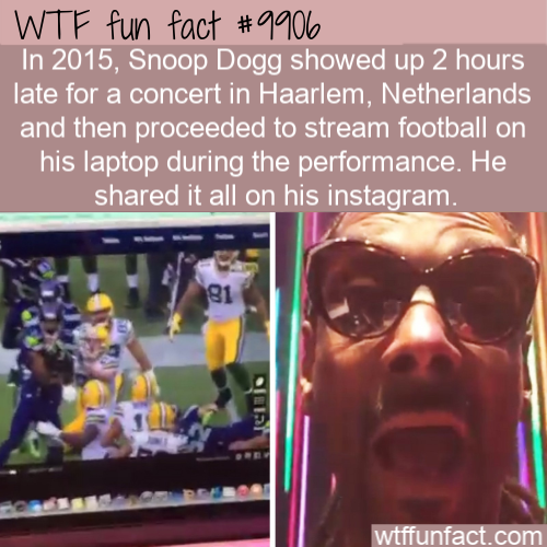 wtf fun fact snoop dogg concert