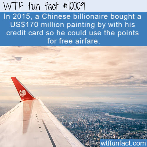 wtf fun fact Billionaire For Free Airfare