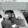 WTF Fact – Deceased In Space