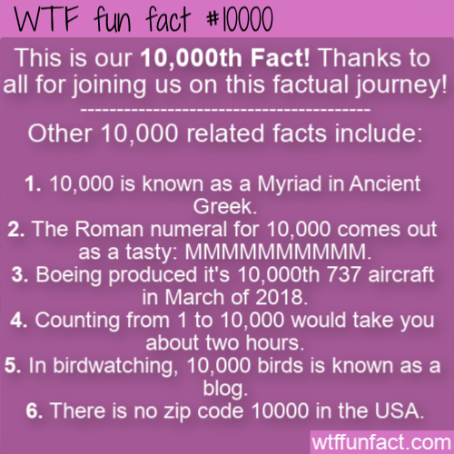 WTF Fun Fact - Facts About The Number 10000