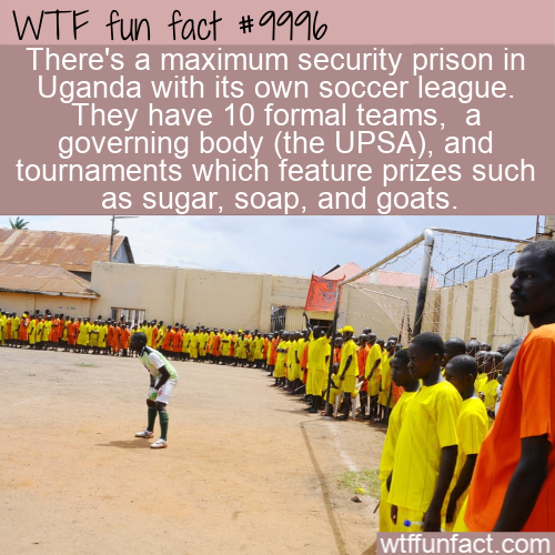 WTF Fun Fact - Uganda Prison Soccer League(1)