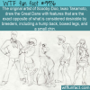 Fun Fact – Scooby-Doo Drawing
