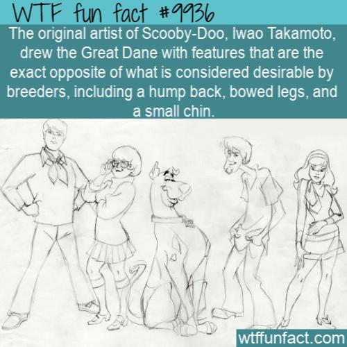 fun fact scooby doo origin