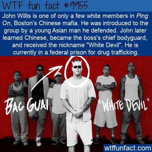 fun fact white devil john
