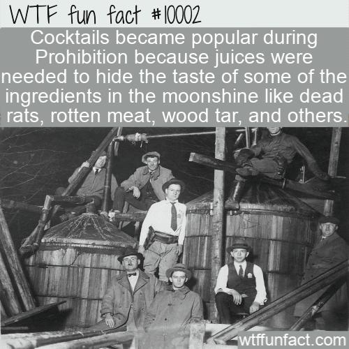 wtf fun fact moonshine ingredients