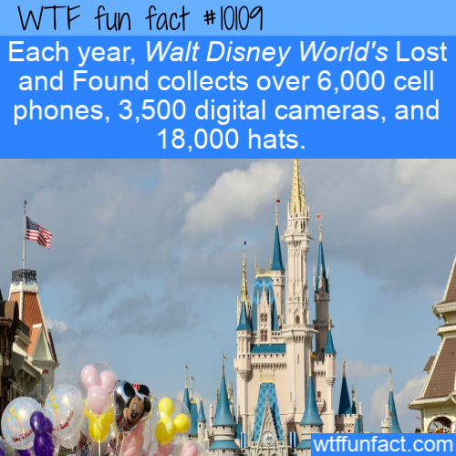 WTF Fun Fact - Lost and Found