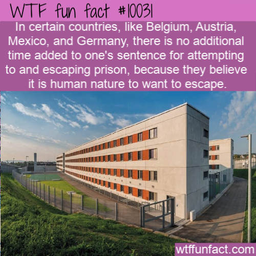 WTF Fun Fact - Escaping Prison