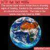 WTF Fun Fact – Ozone Healing
