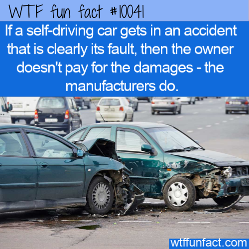 WTF Fun Fact - Manufacturers Will Pay For Damages