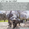 WTF Fun Fact – Polish Army Bear