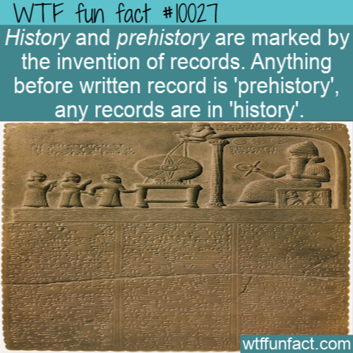 WTF Fun Fact - Prehistory or history