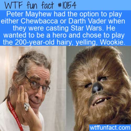 WTF Fun Fact - Why A Wookie