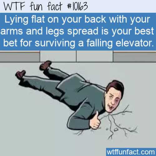 WTF Fun Fact - Challenge For Falling Elevator(1)