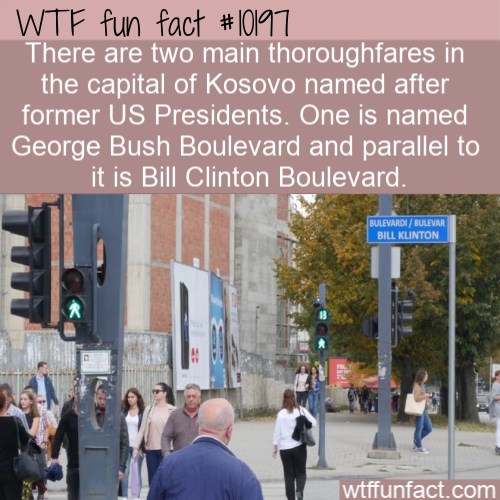 WTF Fun Fact - Kosovo Presidential Streets