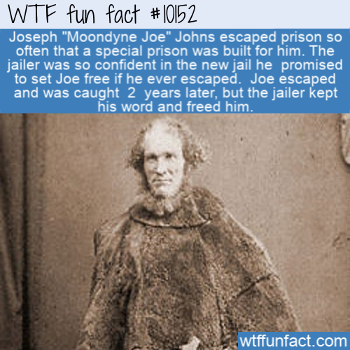 WTF Fun Fact - Moondyne Joe