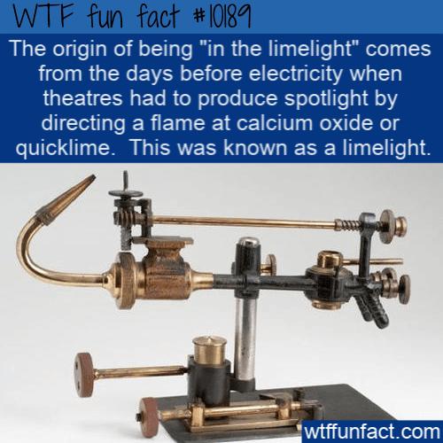 WTF Fun Fact - Origin Of Limelight