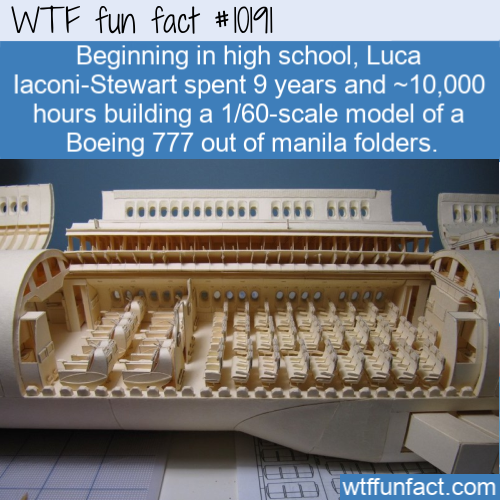 WTF Fun Fact - Paper Airplane