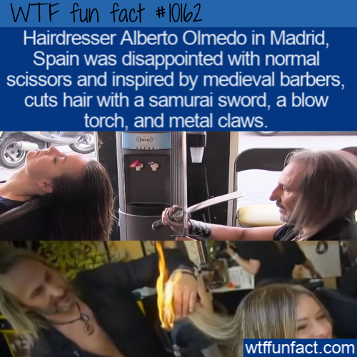 WTF Fun Fact - Samurai Hairdresser(1)