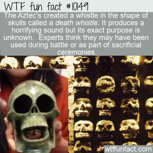 WTF Fun Fact - The Scream Of Thousand Corpses