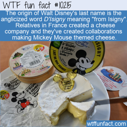 WTF Fun Fact - Disney Origin