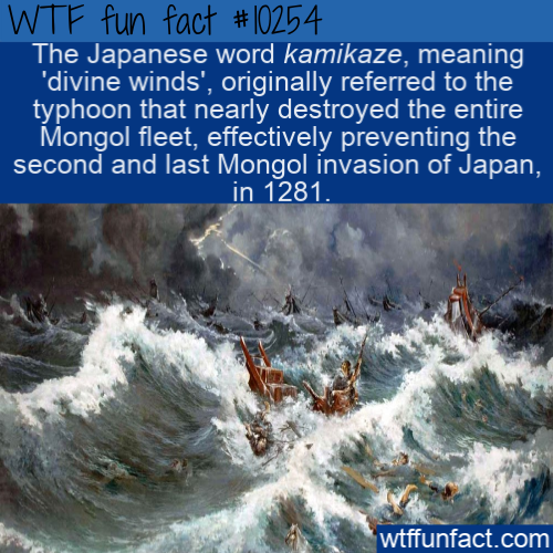 WTF Fun Fact - Divine Winds