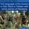 WTF Fun Fact – Ewok Language