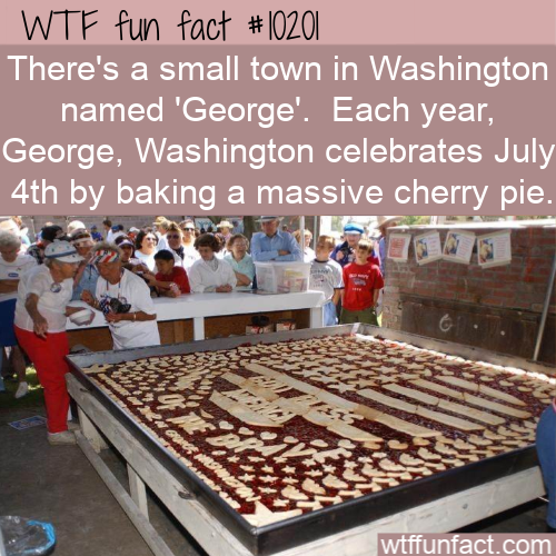 WTF Fun Fact - George, Washington Pie