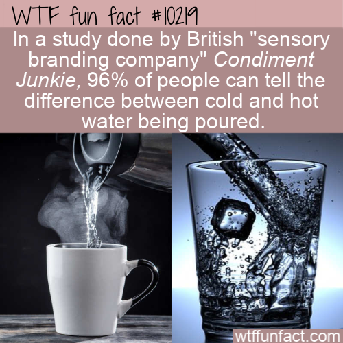 WTF Fun Fact - Hot Or Cold Sound