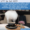 WTF Fun Fact – Coffee Mellow