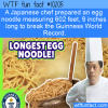 WTF Fun Fact – Worlds Longest Egg Noodle