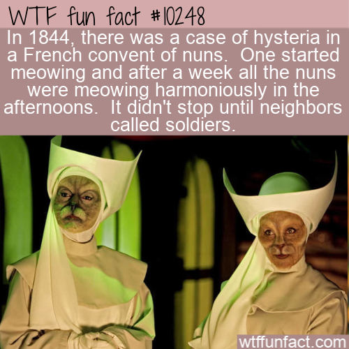 WTF Fun Fact - Meowing Nuns