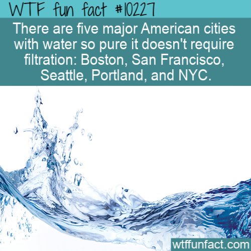 WTF Fun Fact - NYC Pure Drinking Water