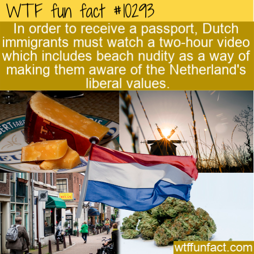 WTF Fun Fact - Odd Dutch Immigration Requirements