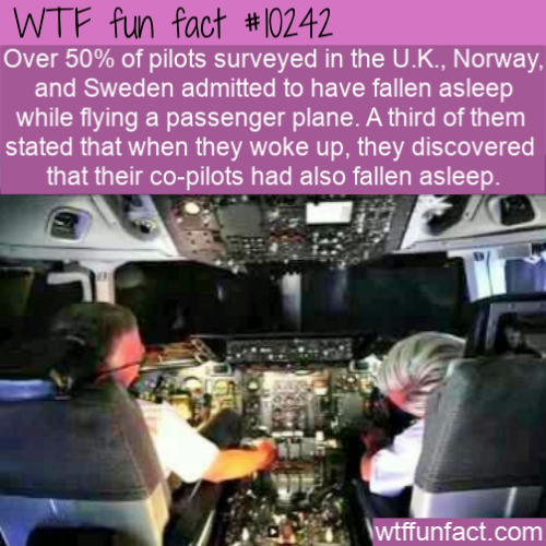 WTF Fun Fact - Please Don't Sleep