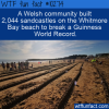 WTF Fun Fact – Sandcastle Record