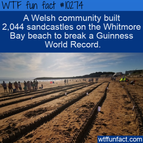 WTF Fun Fact - Sandcastles Made Guinness World Record