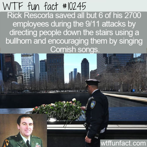 WTF Fun Fact - Save By Cornish Songs.