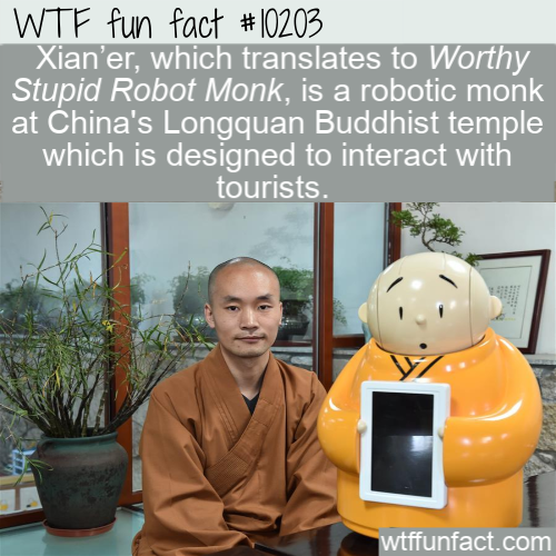 WTF Fun Fact - Worthy Stupid Robot Monk