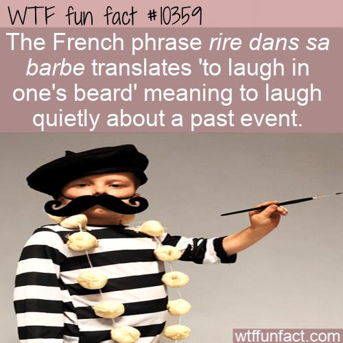 WTF Fun Fact - French Idiom